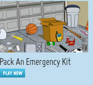 Pack an Emergency Kit Game
